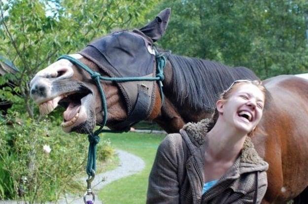caballo riendo con mujer