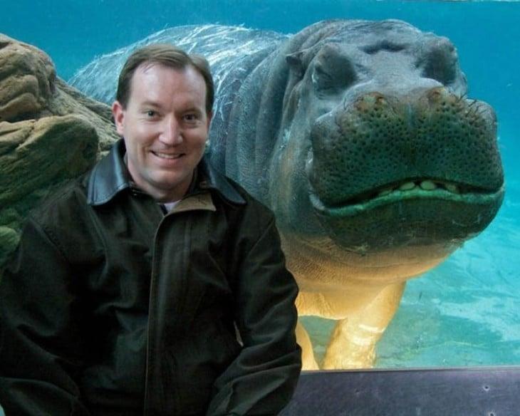 hipopotamo sonriendo en un acuario