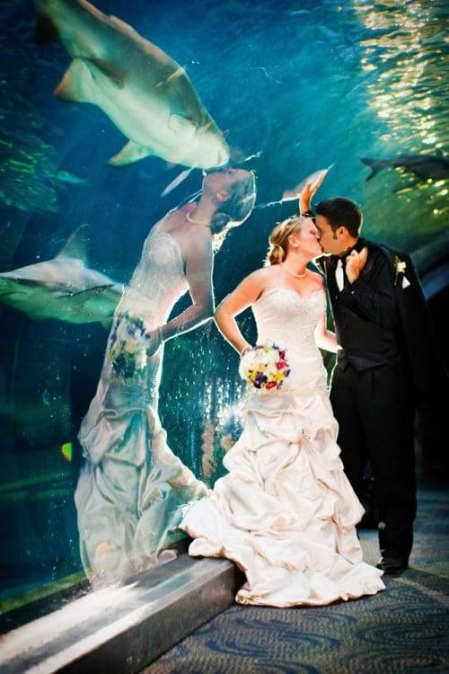 Una pareja besándose mientras que en el reflejo la novia parece besar a un tiburón