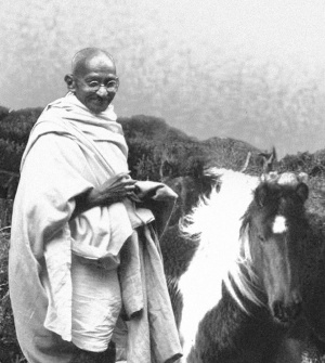 mahatma ghandi al lado de un caballo