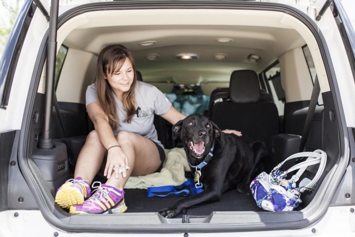 Una chica acariciando a una perra arriba de la parte trasera de una camioneta