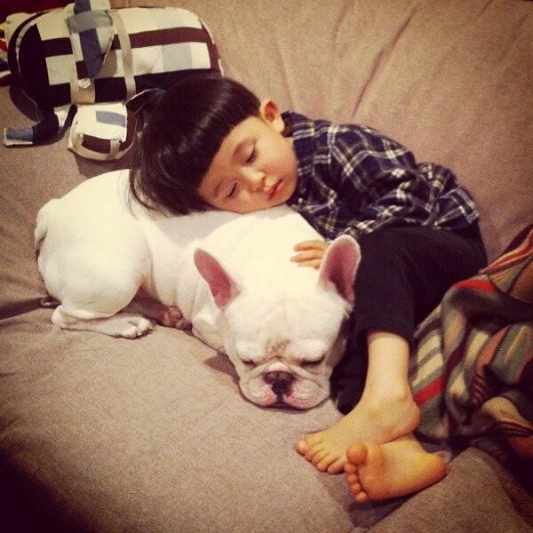 12 niño tierno duerme perro