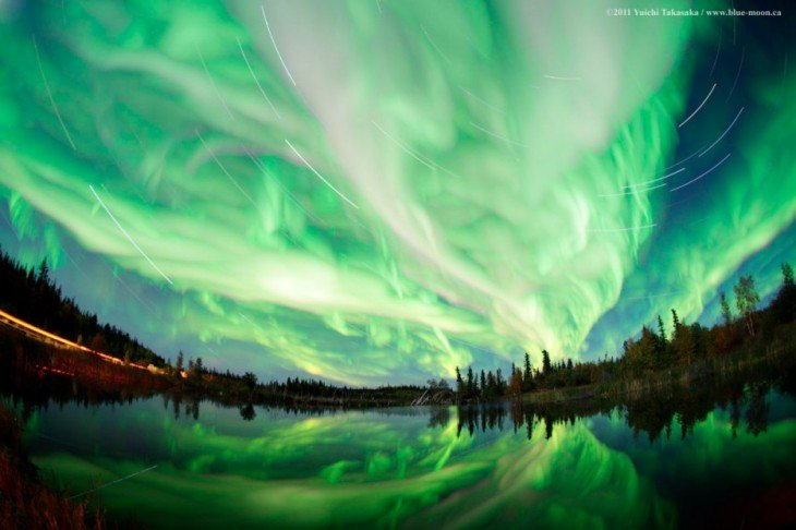 bosque canada luces