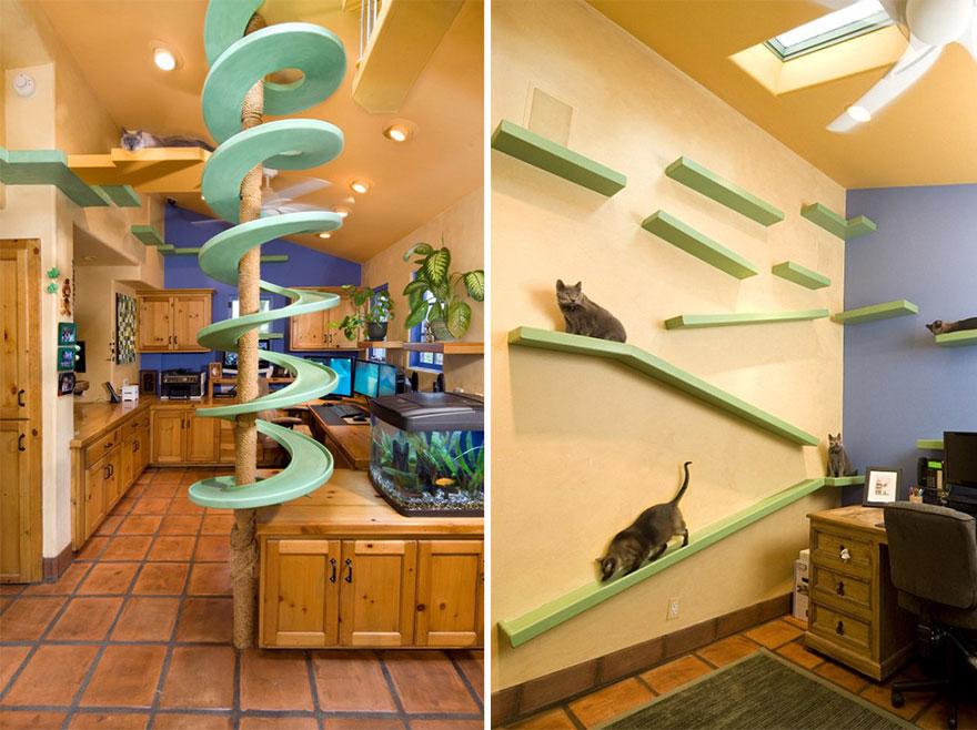 casa con desniveles para gato