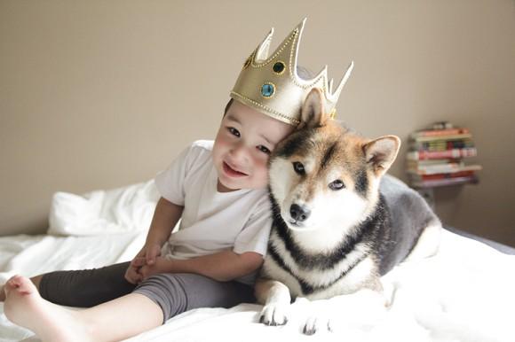 6 niños autistas con perros