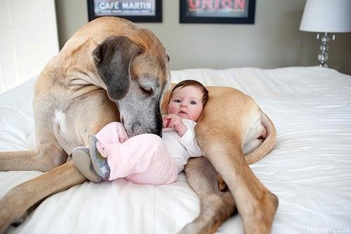 8 bebita alergica con su perro
