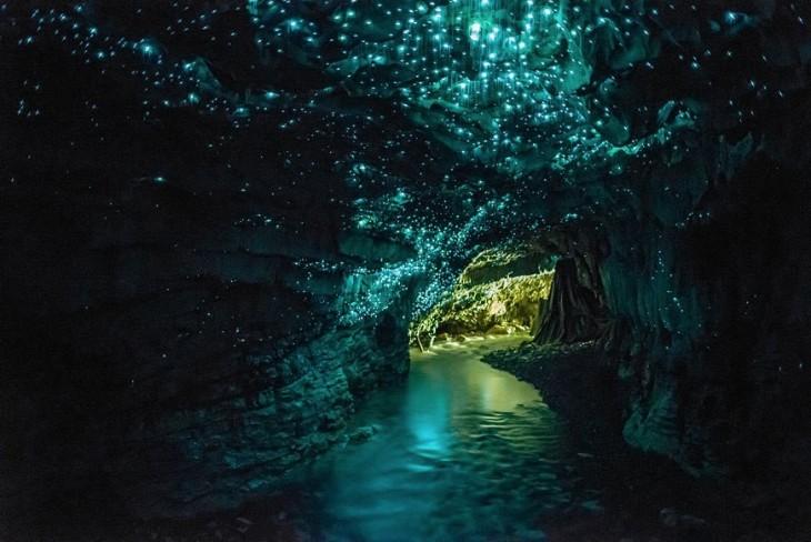 Waitomo Cave, Nueva Zelanda