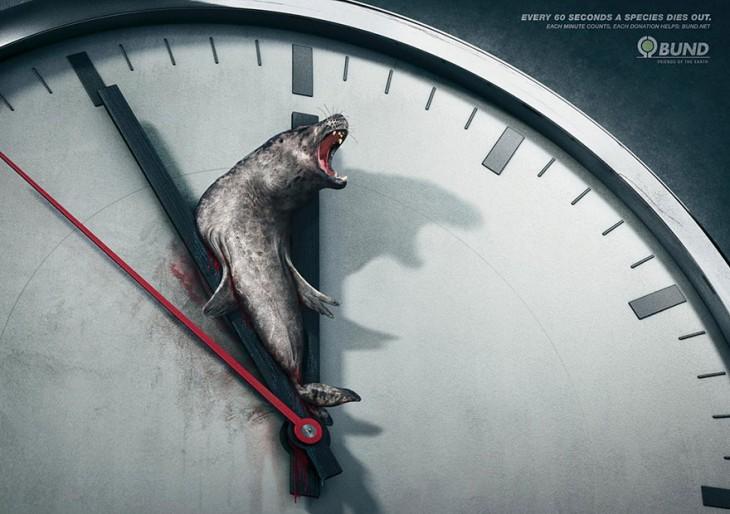 Campaña publicitaria 23