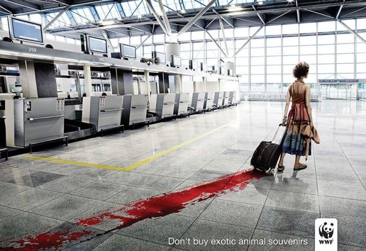 Campaña publicitaria 50