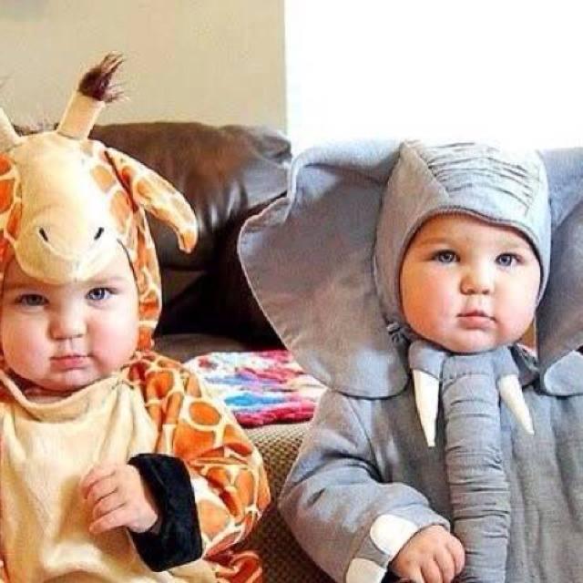 bebés disfrazados de elefante y jirafa