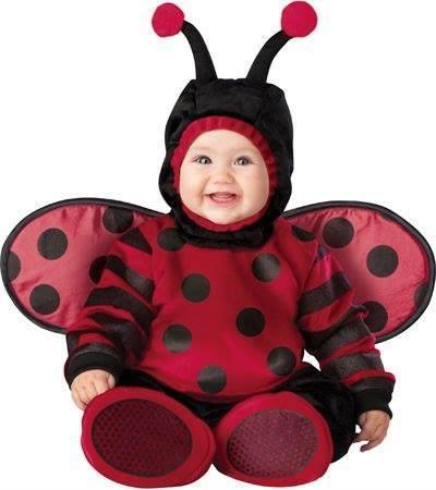 bebé disfrazado de catarina