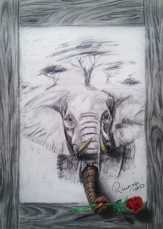 dibujo en 3D de un elefante sosteniendo una rosa en su trompa sobre una hoja de papel