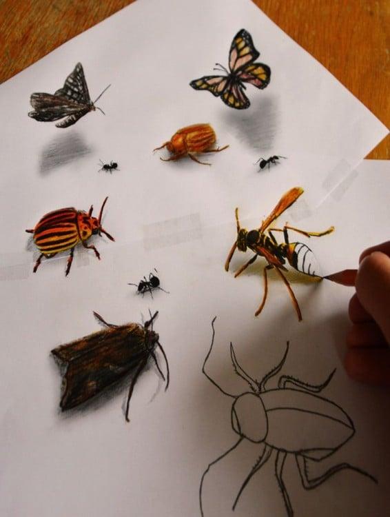 dibujos de insectos sobre una hoja de papel por Ramón Bruin
