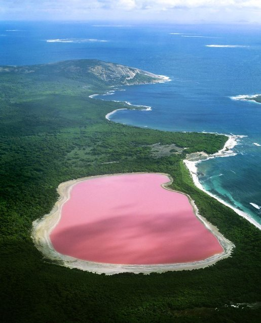 lago rosa, WesternAustralia