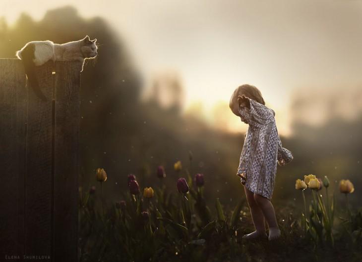 niño jugando con su gato