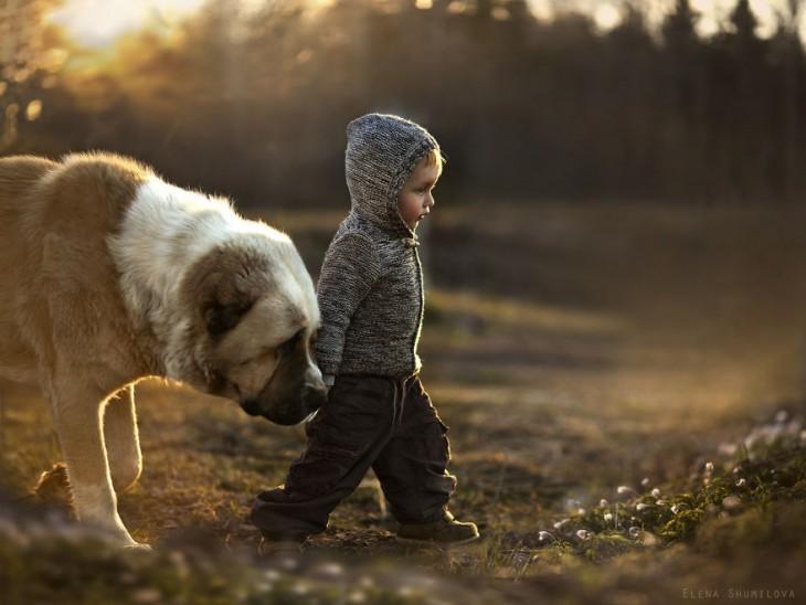 niño caminado con su perro