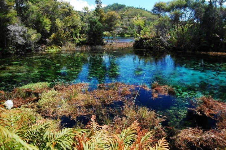 Pupu-Springs-Tasman-New-Zealand-940x625