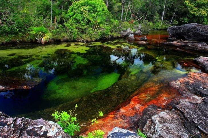 Rio caño cristales, colombia 2