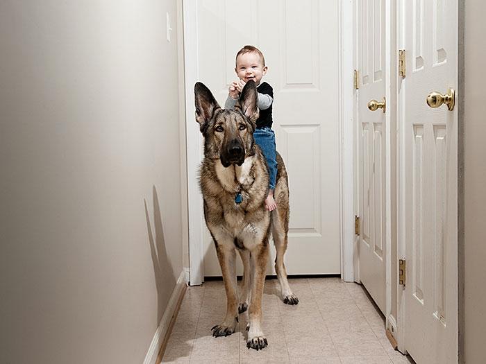 bebe arriba de perro haciendole caballito