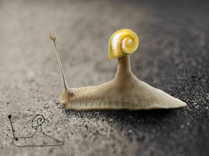 caracol telmo