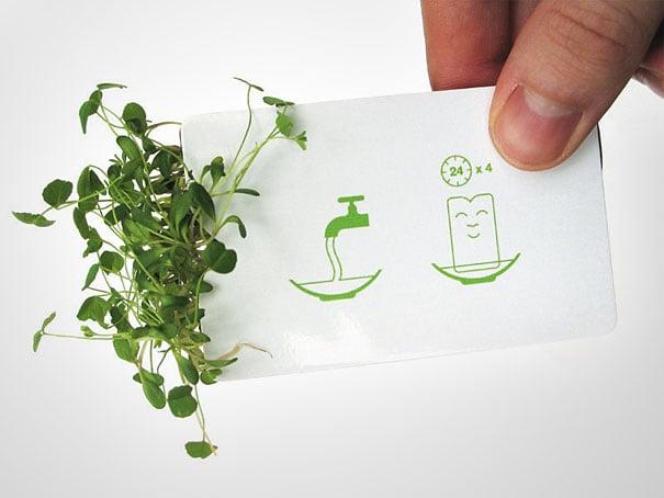 genial idea para diseñar jardines