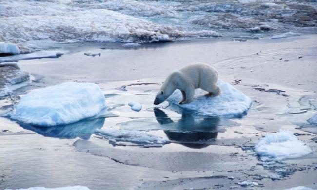 desgajamiento de hielo