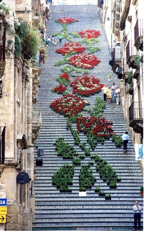 escaleras con rosas