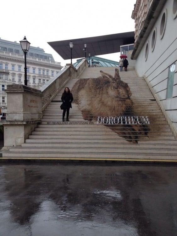 escaleras de conejo