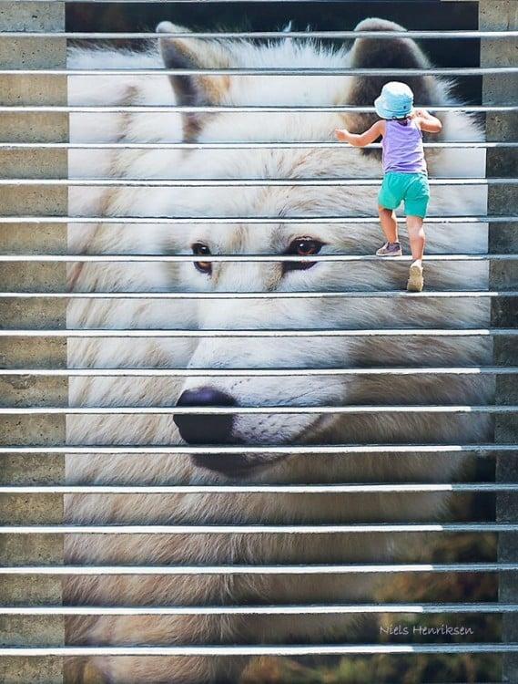 escaleras de lobo