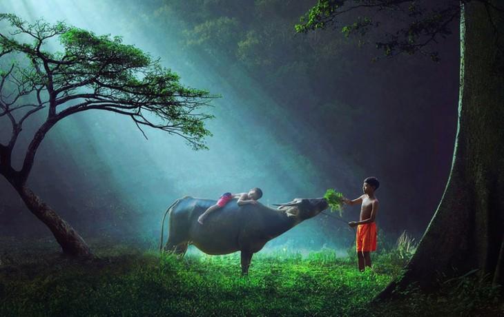 indonesia niños elefante