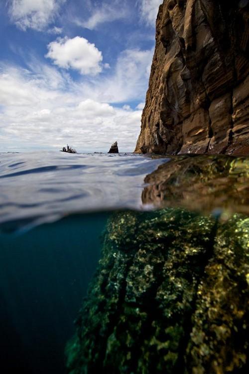 isla galapagos