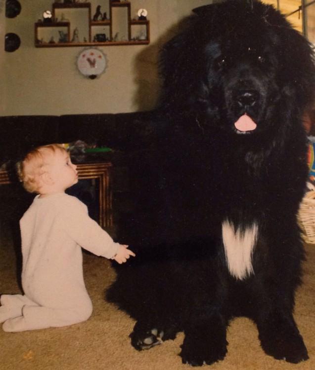 bebe jugando con perro negro