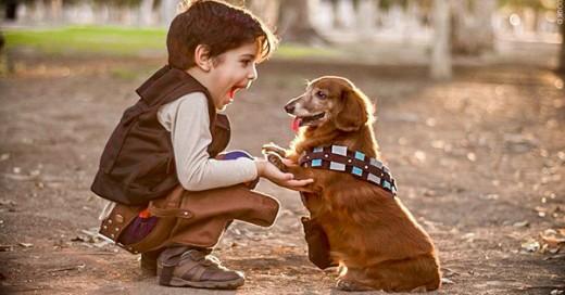 porque los niños deben tener perros