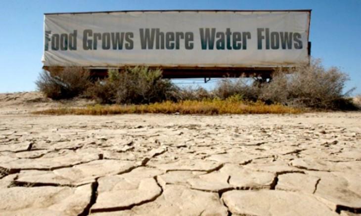 la comida crece donde el agua fluye, sequía en california