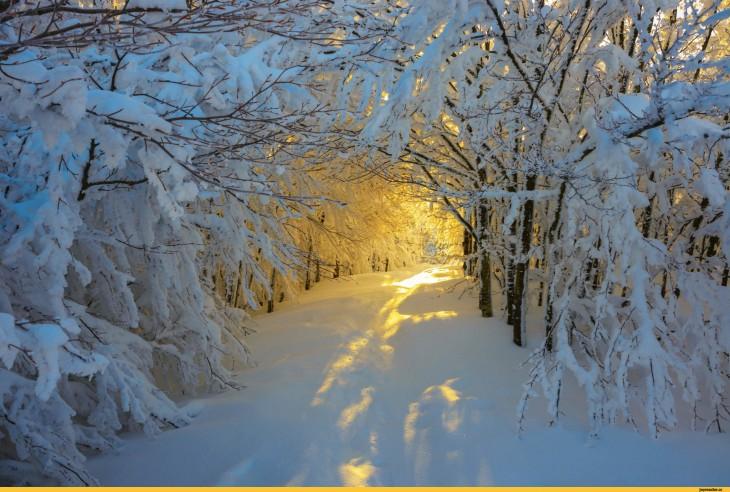 пейзаж-зима-снег-солнце-1365779