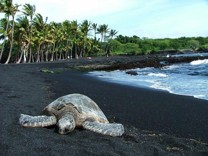 Playas con arenas negras por la erosión volcánica