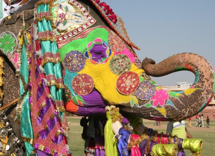 94627828.aVYq54Xd.ElephantFestivalJaipur2