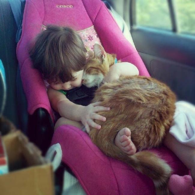 niña durmiendo con gato