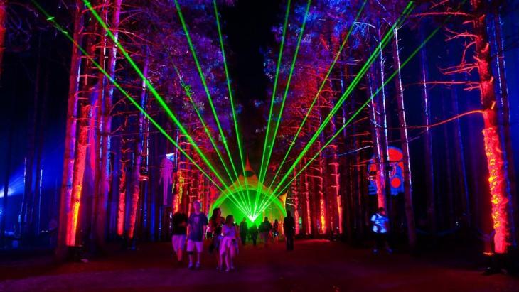 arboles iluminados durante el festival de Música Bosque Eléctrico, Rothbury, Michigan
