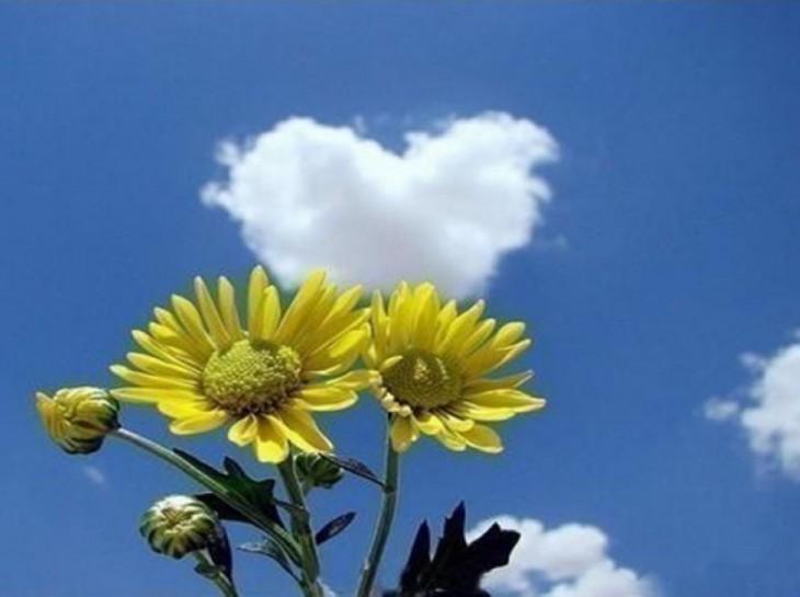nube con forma de corazón