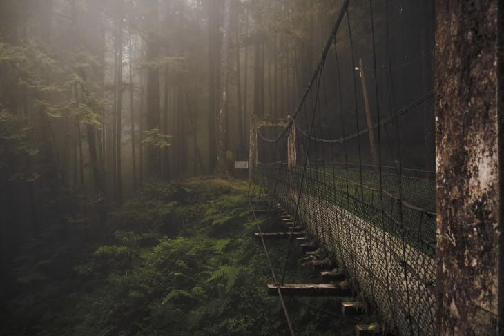 puente en el bosque, Taiwan