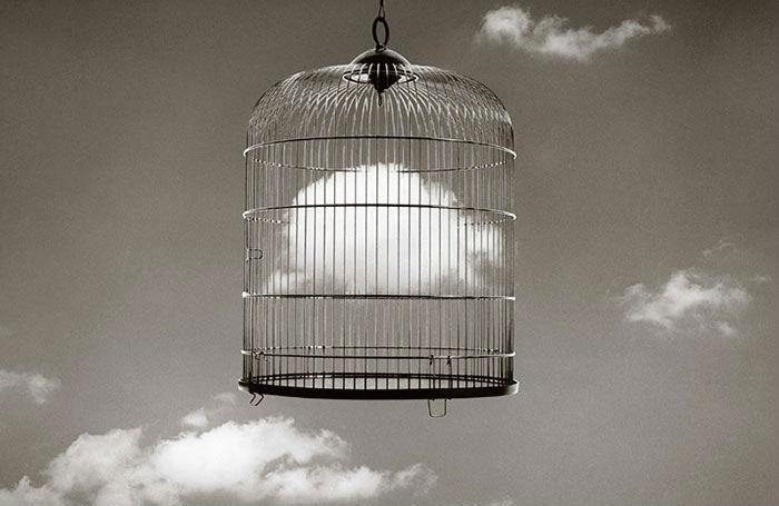 jaula con nube
