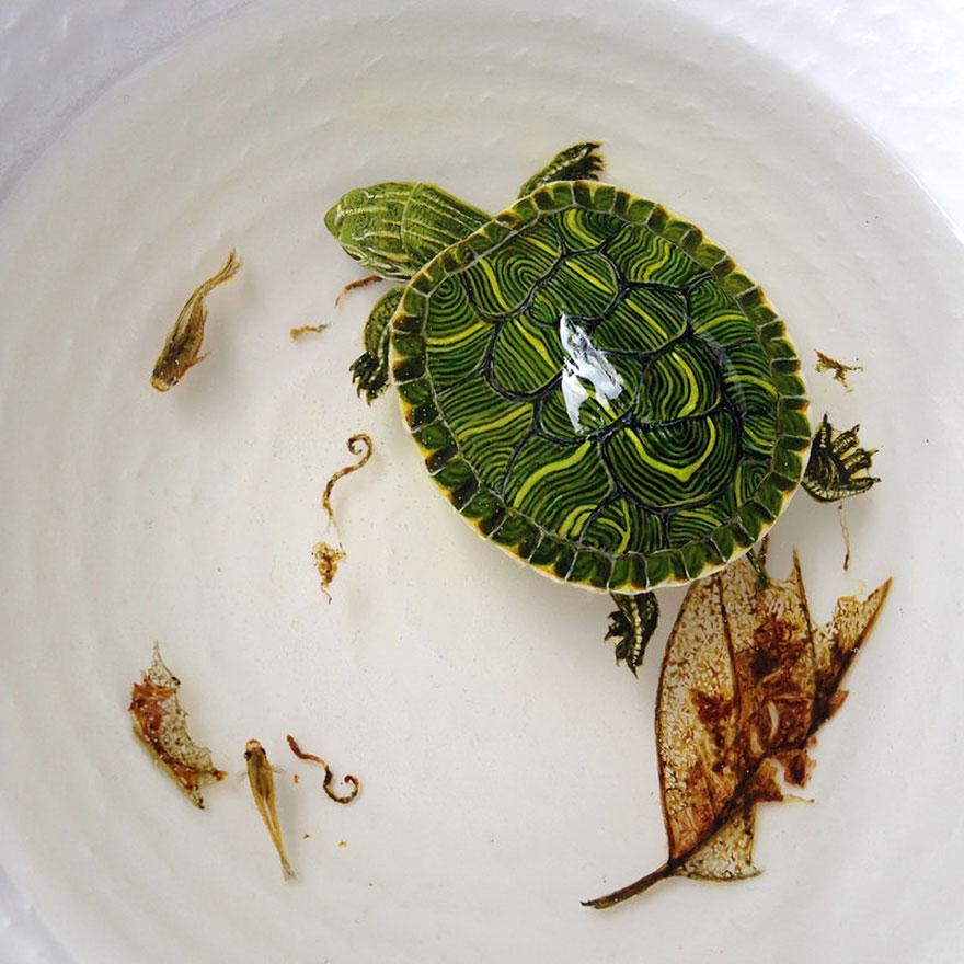 keng lye tortugas en un plato
