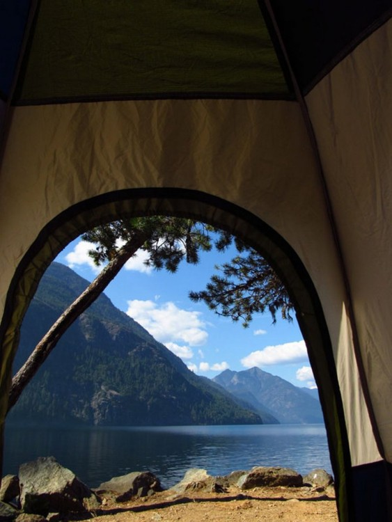 carpa en el lago ross