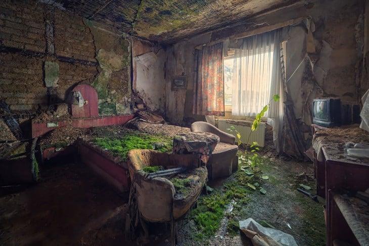casa totalmente inundada de vegetacion