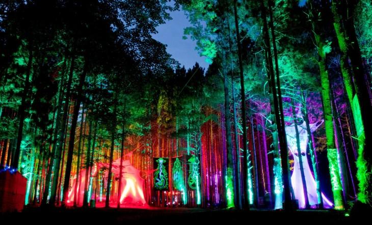 Festival de arboles iluminados en Música Bosque Eléctrico,