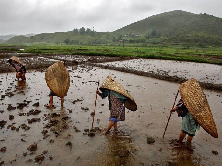 rain-mawsynram-india_63763_990x742