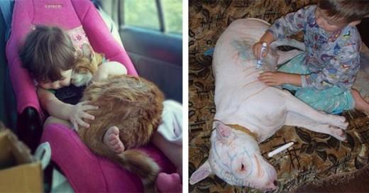 razones por las que debes compartir tu infancia con una mascota
