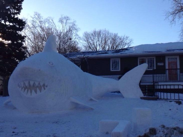 tiburon de huelo