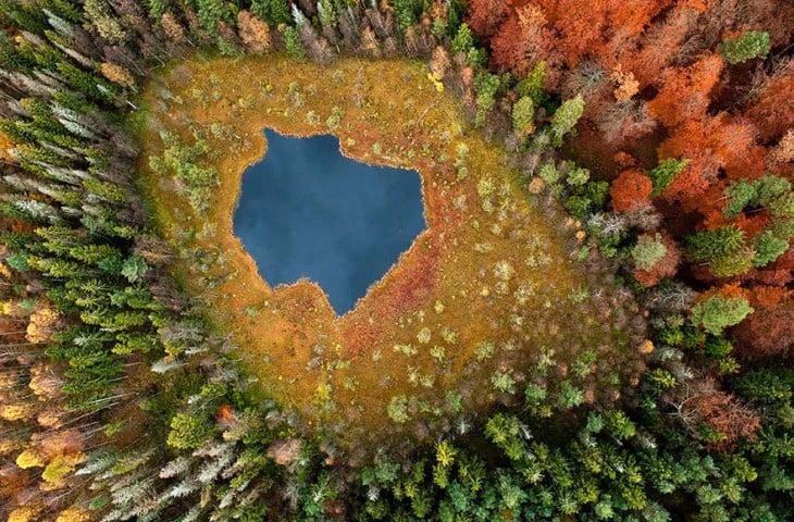 Forest Lake en Polonia